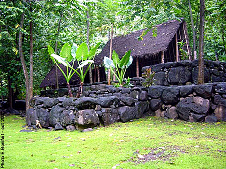 house<br /> reconstruction in Taipivai&#8221; width=&#8221;425&#8243; border=&#8221;0&#8243; /></p> <p>A house built on a terraced <em>paepae</em> in Hakaui, Nuku Hiva. (Source:<em><a href=
