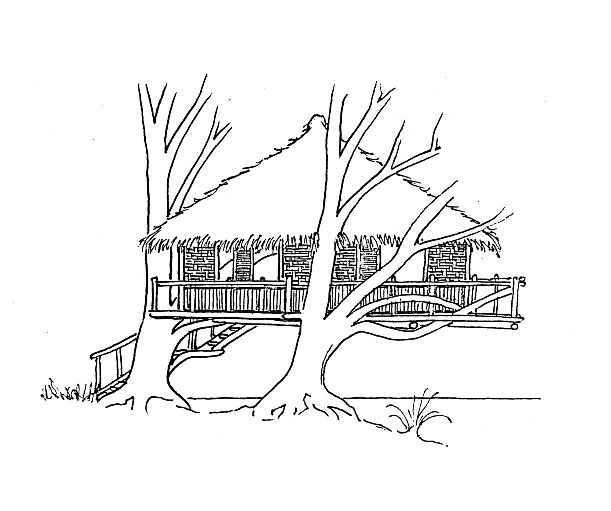 Tree House Line Drawing